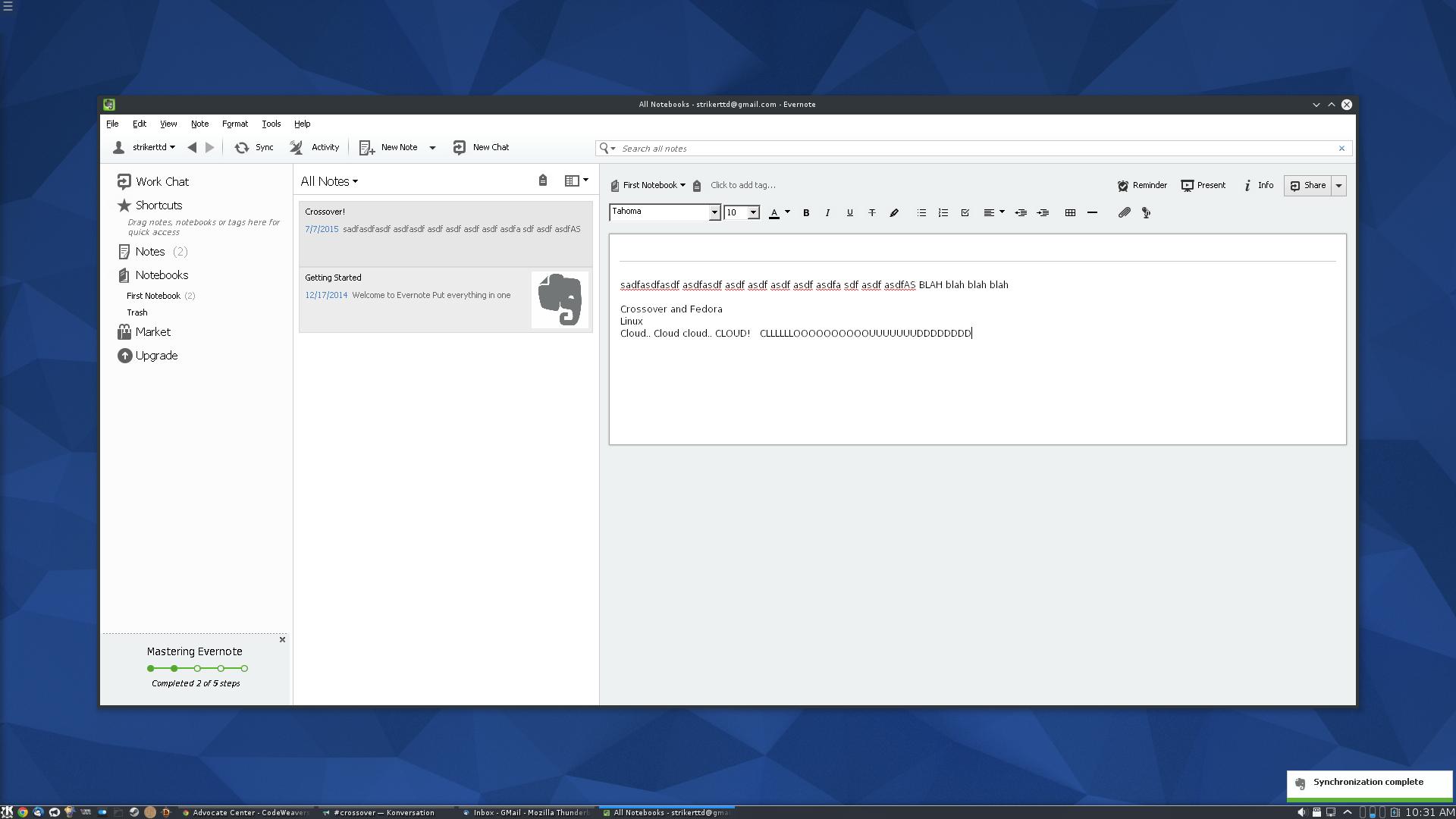 Evernote 5 x | What Runs | CodeWeavers