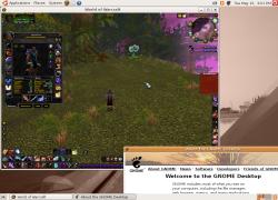 Screenshots for World of Warcraft | CodeWeavers